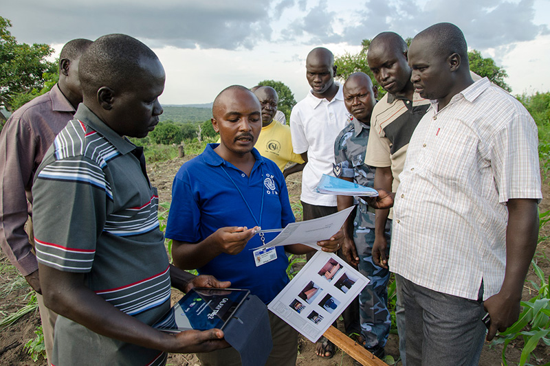 South sudan builds border management capacity international iom south sudan immigration officials and engineers discuss the blueprints for the jale border malvernweather Images