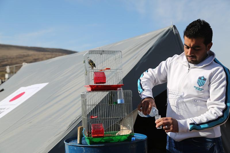 Sharif Mahmoud, de 24 años de edad, refugiado sirio proveniente de Kamishlu, se benefició de las tiendas de campaña donadas por el Gobierno del Japón. © OIM 2014