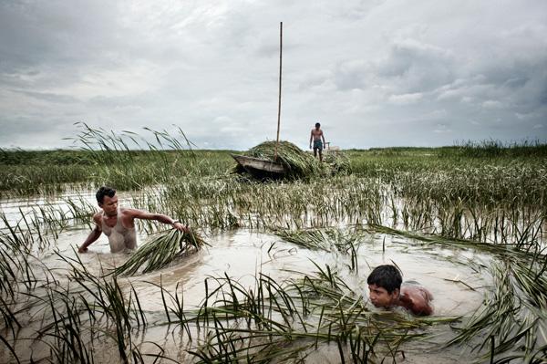 environment pollution in bangladesh