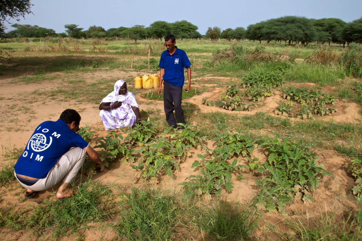 A woman shows her harvest from the Sissakou integrated farm to IOM staff. The community stabilisation projects implemented by IOM in refugees host communities in southeast Mauritania contribute to strengthening the resilience of villagers and reducing the risks of conflicts between locals and refugees.