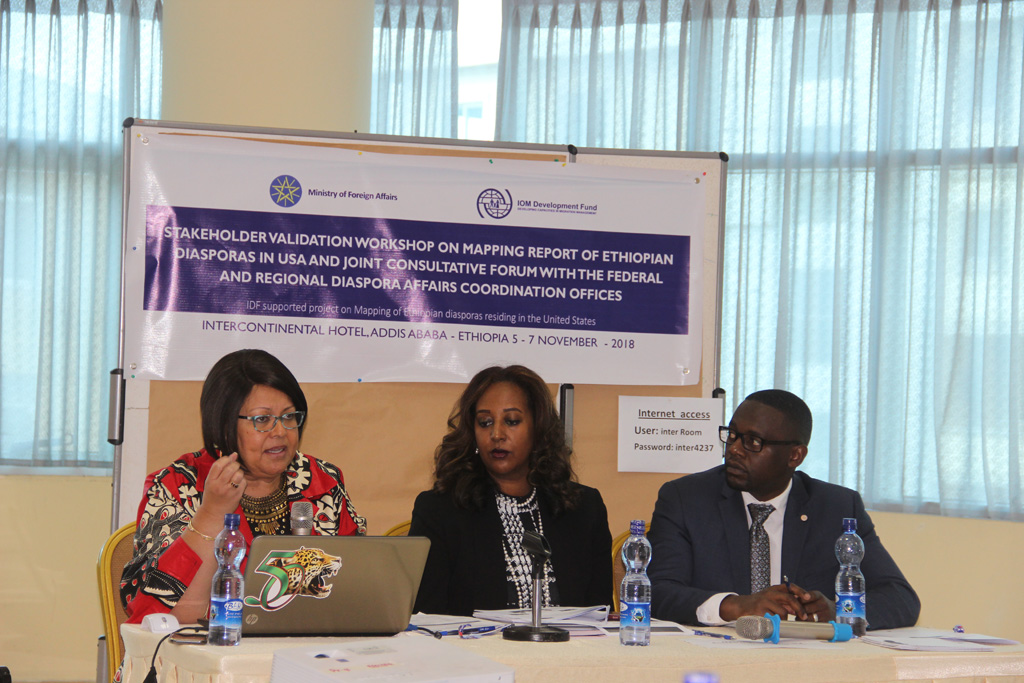 IOM Presents Study Findings on Ethiopian Diaspora Mapping in the United States