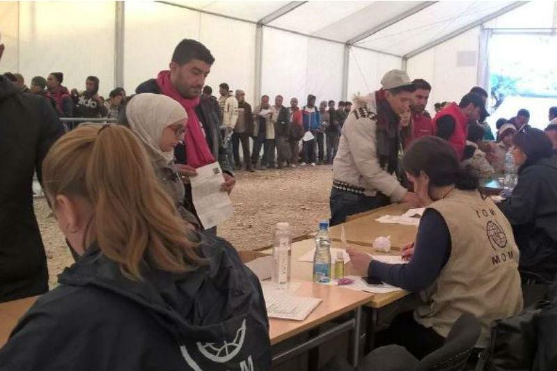 Europe/Mediterranean - Migration Crisis Response Situation Report   19 November 2015