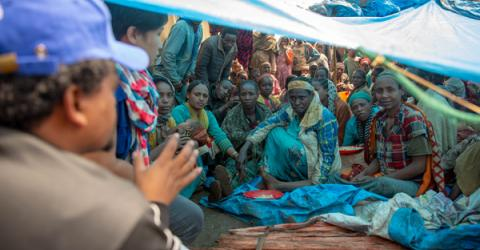 IOM Identifies 970,000 Displaced People in Ethiopia's Gedeo, West Guji Since April