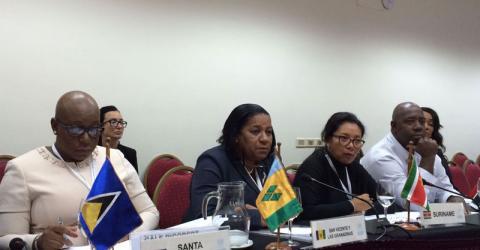 Representatives from Caribbean countries at the Montevideo seminar. Photo: IOM / Anna Platonova 2016