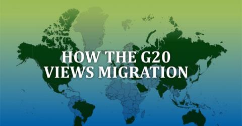 Most G20 nations want immigration levels maintained or increased, according to an IOM / Gallup survey.