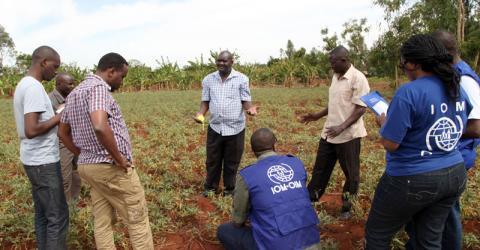 Dr. Sammy Agili of the International Potato Centre (centre) explains how to grow orange flesh sweet potato vines. Photo: Birgen Cyprine / IOM