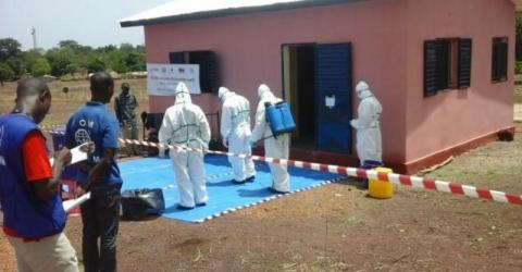 Guinea - Ebola Response Situation Report | 31 May 2016