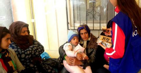 Europe / Mediterranean - Migration Crisis Response Situation Report   2 June 2016