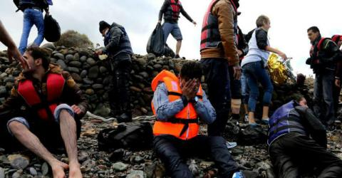 Europe/Mediterranean Migration Response Situation Report | 25 February 2016