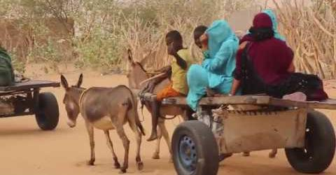 Mauritania | International Organization for Migration