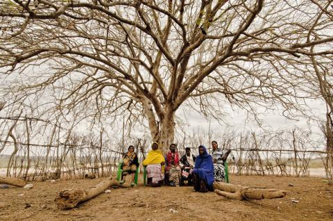 Displaced women seated under tree during a post-distribution monitoring focus group discussion concerning beneficiary satisfaction of received emergency shelter and non-food items (ES/NFI). Photo: Rikka Tupaz / UN Migration Agency (IOM) 2017