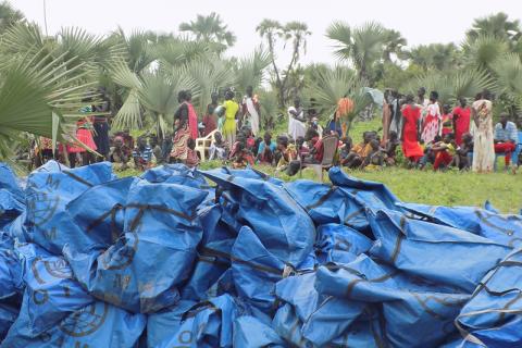 Les déplacés internes se réunissent sur le site de la distribution pour recevoir des kits de survie, dans l'Etat d'Unité, au Soudan du Sud. © Comité international de secours