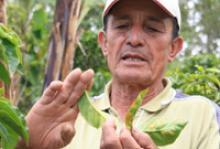 Coffee grower José Herney López © IOM 2011