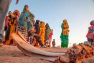 Millones en Somalia, Sudán del Sur y Yemen enfrentan hambruna. Foto: OIM.