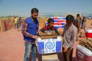 IOM distributes non food relief kits at Digaba camp to recent IDPs from Ninewa governorate. Photo: IOM 2016