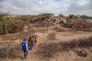 Somalia enfrenta hambruna disparada por una sequía de considerable proporción. Foto: OIM/Mary-Sanyu Osire