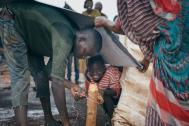 A displaced family builds a temporary shelter at the UN protection of civilians site in Wau, South Sudan. File Photo: IOM / Muse Mohammed