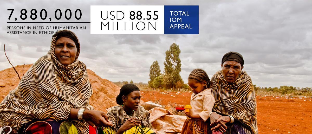 Ethiopia | International Organization for Migration