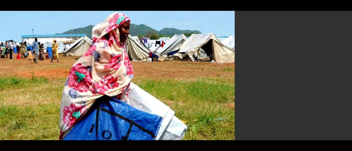 Groupe de la coordination et de la gestion des camps