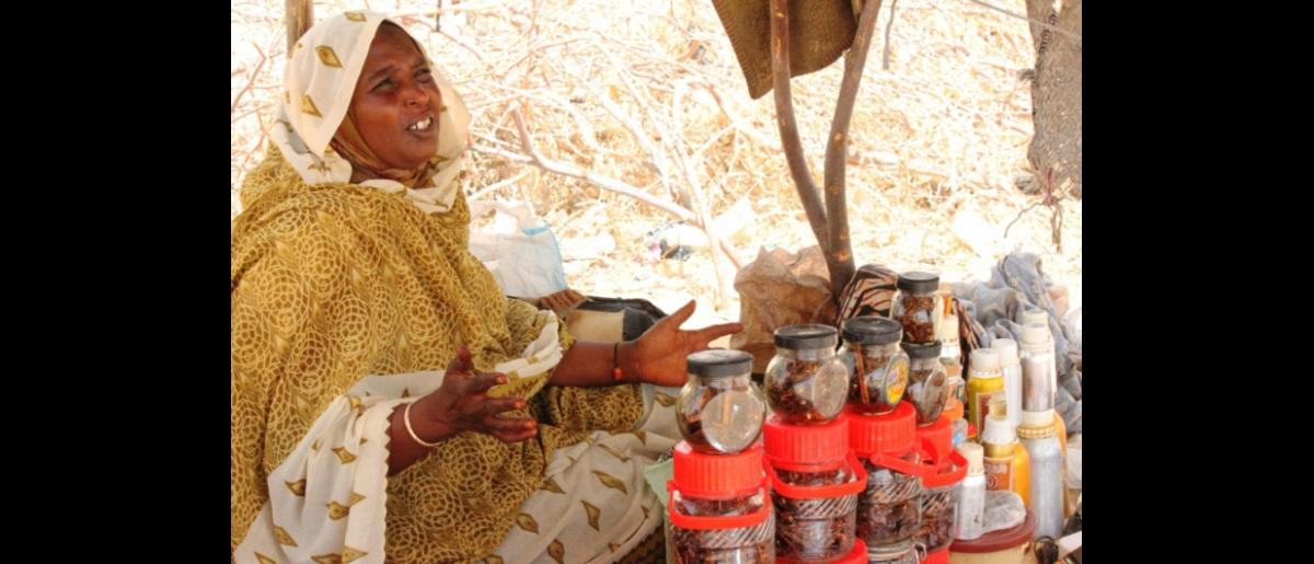 In Mao, west Chad, returnees have set up their own market to survive with their families. However, they say that their earnings are not the same as what they used to make in Libya. © IOM 2012