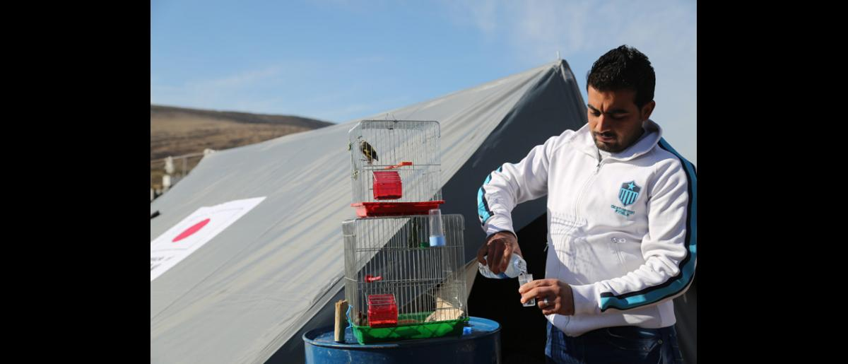 Sharif Mahmoud, 24, a Syrian refugee from Kamishlu benefited from the tents donated by the Japanese government. © IOM 2014