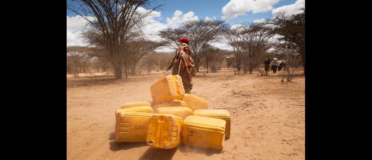 A Somali refugee girl pulls her family's jerry cans towards a waiting IOM bus. Her family and other refugees came from the nearby Kismayo in Somalia traveling by foot and donkey cart to reach the Kenyan border town of Wel Merer. Each migrant was checked by IOM health workers before embarking on the 45 minute journey to the Dagahaley Camp. © IOM 2011 (Photo: Brendan Bannon)