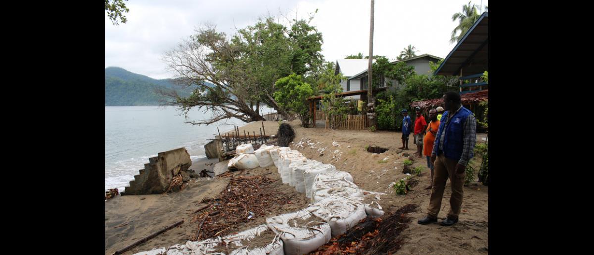 Le Coordinateur de la gestion des risques de catastrophe de l'OIM en Papouasie-Nouvelle-Guinée, Wonesai Sithole, inspecte l'élévation rapide du niveau de la mer et l'érosion côtière à Lagui, sur la côte septentrionale du pays. Avec le soutien d'USAID, l'OIM aide cette communauté à prendre des décisions sur la manière de s'adapter au changement climatique, y compris sur l'éventualité de déplacer le village dans son entier. © OIM 2014 (Photo de Joe Lowry)