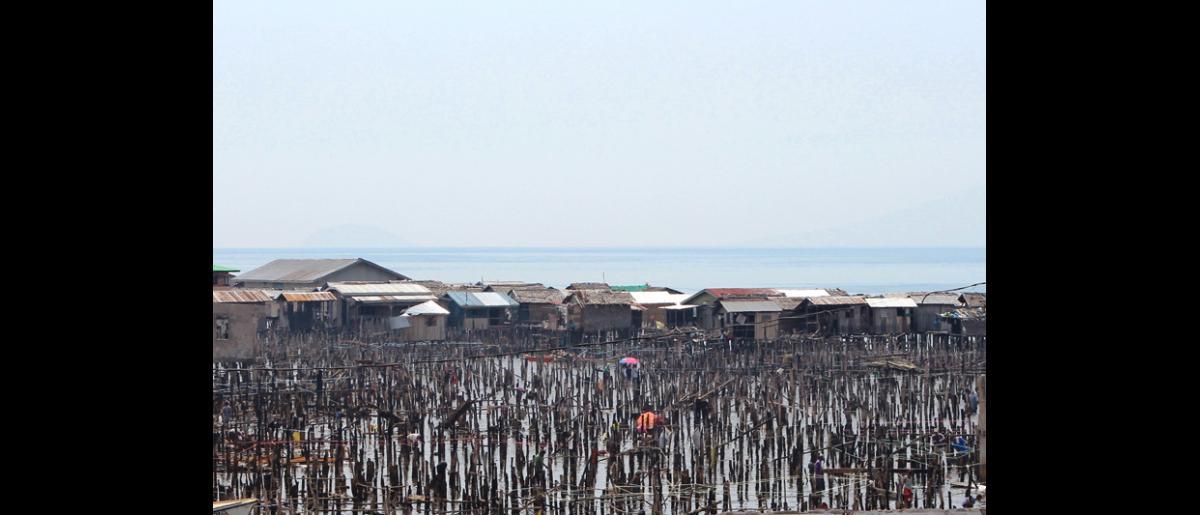 """Lo único que queda de la comunidad Badjao (""""gitanos de mar"""") —otrora próspera, en el suburbio de Mariki, Zamboanga, al sur de Filipinas— son miles de pilotes carbonizados. Cientos de estas viviendas sobre pilotes, construidas en el mar, fueron quemadas durante los enfrentamientos que tuvieron lugar en septiembre. Sólo recientemente se ha permitido a los residentes que regresen de manera temporal a la zona para que recuperen lo poco que queda. © OIM 2013 (Fotografía por Joe Lowry)"""