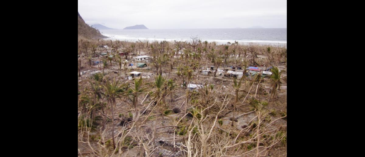 26 March 2015, Mataso island, Vanuatu: Trees were shredded, uprooted and snapped in half. Food gardens were destroyed. Community members spent a harrowing night seeking shelter from the cyclone's 350 km/h winds. © IOM/Maria Moita 2015
